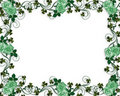 St Pattys Day Shamrocks and roses Stock Photo