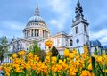 St. Paul`s Cathedral at sunset, London, UK Royalty Free Stock Photo