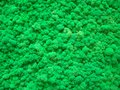 Stabilized green moss texture Royalty Free Stock Photo