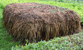 Stable manure composting Royalty Free Stock Photo