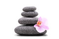 Stack of balanced stones and a pink flower isolated on white background Royalty Free Stock Photos