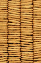 Stack of cracker biscuits close up view from the side a Royalty Free Stock Photo