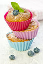 Stack of cupcakes with blueberry Royalty Free Stock Photo