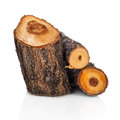 Stack of cut logs fire wood from tree Royalty Free Stock Photo