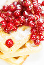 Stack of delicious belgian waffle with red currant and powdered sugar Royalty Free Stock Photo