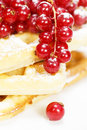 Stack of delicious belgian waffle with red currant and powdered sugar Stock Photos