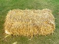 stack of dry straw or hay Royalty Free Stock Photo