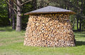 Stack firewood fuel in garden on grass Royalty Free Stock Images