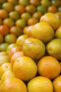 Stack of Fresh Oranges at Farmers Market Royalty Free Stock Photo