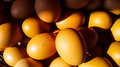 Stack of gold eggs Royalty Free Stock Photo