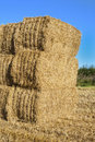 Stack of hay bales in a field england shropshire Royalty Free Stock Image