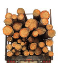 Stack lumber truck wood Royalty Free Stock Image