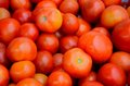 Stack of numerous tomatoes a large number ripe red resting on each other on sale Royalty Free Stock Images