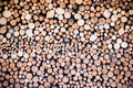 Stack of round cutted firewood pieces Royalty Free Stock Photo