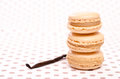 Stack of three macarons with vanilla Stock Photography