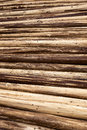 Stack of wood background a at tree farm Stock Photography