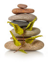 Stack of zen stones with dried leaves Stock Image