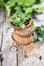 Stacked bowls with cilantro small fresh leafes powder and grains Royalty Free Stock Photos