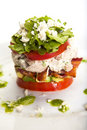 Stacked Cobb Salad Stock Images