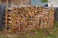 Stacked of firewood laying in the yard Royalty Free Stock Image