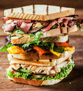 Stacked grilled sandwiches with fresh ingredients including rare roast beef chicken breast and cheese all served herbs and Royalty Free Stock Photo