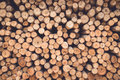 Stacked of wood log  for construction buildings background Royalty Free Stock Photo