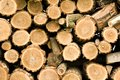 Stacked wood logs pile of the and cut on the small pieces background Royalty Free Stock Images