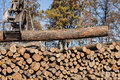 Stacking tree logs at a sawmill Royalty Free Stock Photo