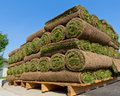 Stacks of sod Royalty Free Stock Photo