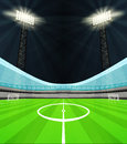 Stadium midfield view with shiny reflectors at night vector Royalty Free Stock Photo