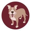 Staffordshire Terrier dog vector illustration