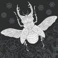 Stag beetle in black and white style