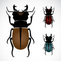 Stag beetle the largest vector illustration Stock Photo