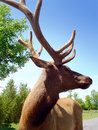 Stag head Royalty Free Stock Images