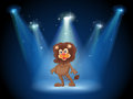 A stage with an old lion at the center illustration of Royalty Free Stock Photography