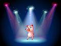 A stage with a pig at the center illustration of Stock Images