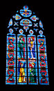 Stained glass in cathedral of Fougères Royalty Free Stock Image