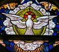 Stained Glass - Dove, Holy Spirit Royalty Free Stock Photo