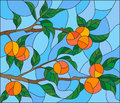 Stained glass illustration with the branches of orange tree , the fruit branches and leaves against the sky