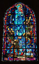 Stained glass windows Stock Images