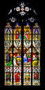Stained glass windows in the cologne cathedral Stock Images