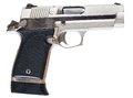 Stainless handgun semi automatic that has a shiny steel finish Stock Photos