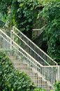 Stair and access in green liane surround Stock Photography