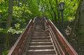 Stair climbing out of the ravine. Royalty Free Stock Photo