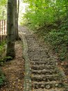Stair in the park Royalty Free Stock Photo