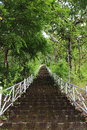 Stair way the to heaven in the jungle Royalty Free Stock Photography