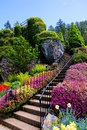 Staircase surrounded by beautiful spring flowers