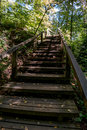 Staircase through the woods a wood stair case towers high into a wooded campground Royalty Free Stock Photo