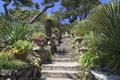 Stairs in beautiful garden Royalty Free Stock Photo