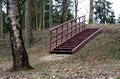 Stairs in the forest the spring time Stock Image